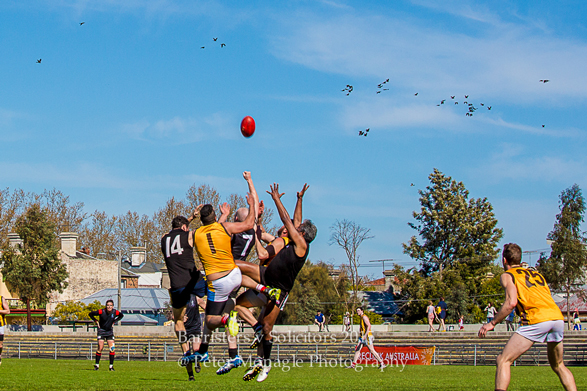 reclink-galbally-cup-charity-cup-during-the-game